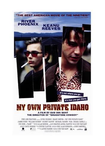 Benim Güzel Idaho'm (Dvd)
