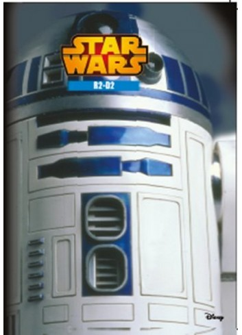Disney Star Wars - R2-D2 Coloring and Play Book (Turkish Book)